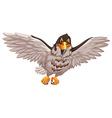 Eagle flying on white background vector image