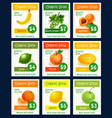 fruit tag and label set for organic shop design vector image