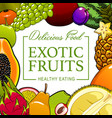 fruits exotic tropical and farm healthy food vector image vector image