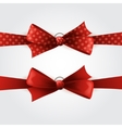 Red polka dot bow and ribbon vector image vector image