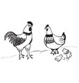 rooster chicken and chicks vector image vector image