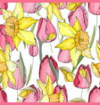 seamless season pattern with red tulips and yellow vector image vector image