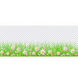 spring border with green grass and flowers on vector image vector image