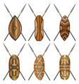 african-shields-04 vector image vector image