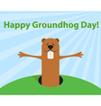 Groundhog day funny cartoon character of marmot vector image vector image