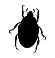 japanese beetle silhouette isolated on white backg vector image vector image