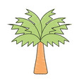 Palm tree with leaves and vegetation vector image