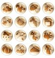 set brown autumn icons vector image