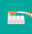 toothbrush cleans teeth brushing teeth vector image vector image