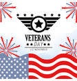 veterans day celebration with flag and fireworks vector image