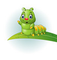 cartoon green caterpillar on the leaf vector image
