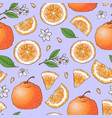 colorful mandarin fruit and citrus ice cream vector image vector image
