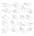 elegant and tender hands with fingers vector image vector image