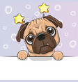 greeting card cute cartoon dog on a blue vector image