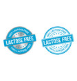 grunge stamp and silver label lactose free vector image vector image