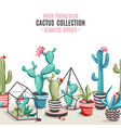 cacti flower seamless border vector image vector image