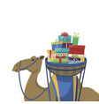 happy epiphany day camel transporting gifts on a vector image vector image