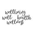 modern calligraphy ink of word wellbeing vector image vector image