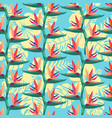 pattern with bird paradise flower tropical vector image vector image