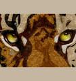 tigers eyes vector image