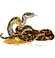 cartoon python guarding treasure vector image vector image