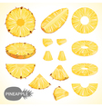 Fruit Set of pineapple slice in various styles vector image