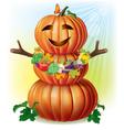 fun pumpkin and harvest vector image vector image