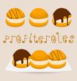 homemade dessert puff cake profiterole vector image