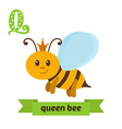 Queen bee Q letter Cute children animal alphabet vector image