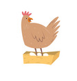 a cute hen with eggs vector image