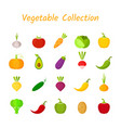 flat design isolated colorful vegetable icon set vector image