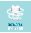 Teeth protection tooth care dental medical vector image vector image