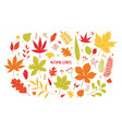 collection of different colorful autumn tree vector image