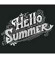 Hello summer Hand drawn vintage lettering with vector image vector image