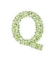 Spring green leaves eco letter Q vector image vector image