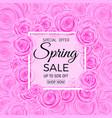 spring sale banner spring sale phrase on vector image vector image