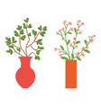 vases with flower home decor interior vector image