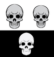 Black and Gray Skull vector image