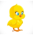 Cute little yellow cartoon chicken vector image vector image
