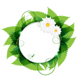 Daisies With Leaves vector image vector image