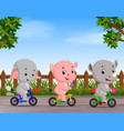 funny animals cycling in the road vector image vector image