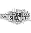 shelter word cloud concept vector image vector image