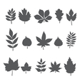 Silhouettes of tree leaves Autumn leaf collection vector image vector image