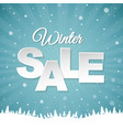winter poster vector image vector image