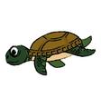 Marine turtle cartoon vector image