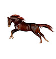 horse running at a gallop from splash vector image vector image