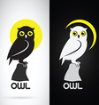 image an owl design vector image vector image