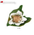 Lu Sipi or Tongan Meat with Coconut in Taro Leaf vector image vector image