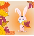 reeting card with Bunny and leaves vector image