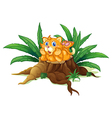 A cat above a stump with leaves vector image vector image